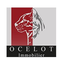 agence immobiliere logo
