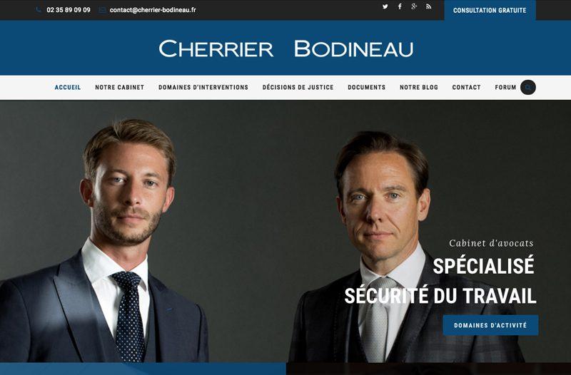 site-cherrier-bodineau-e1482456887627-800x526